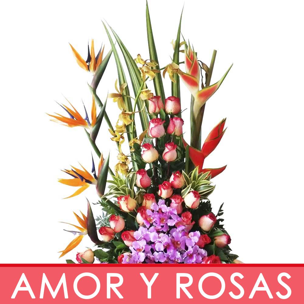 AMOR Y ROSAS